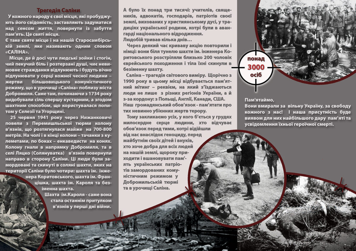 Буклет із проектом меморіального комплексу «Біль Саліни»