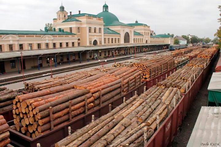 Вагони з лісом-кругляком на станції Чернівці