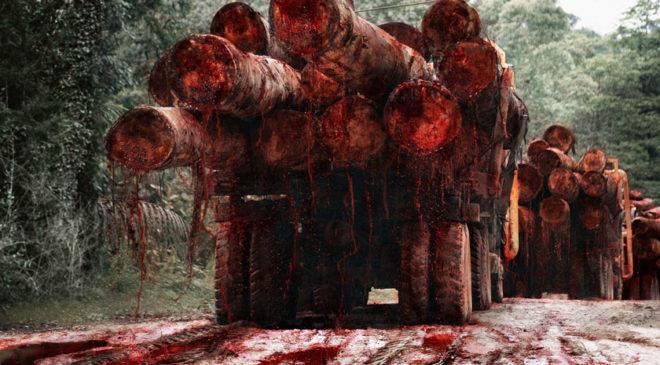 Знаменитий фотомонтаж «кривавих лісовозів»