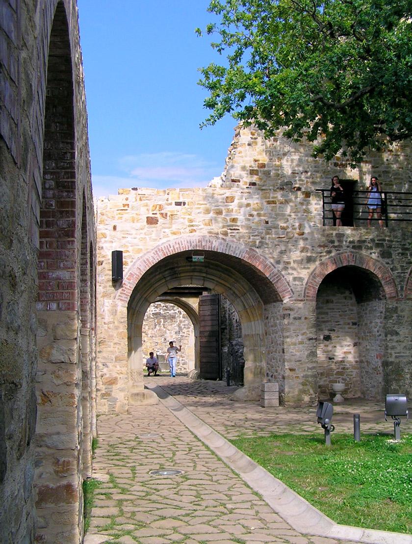 Руїни тронної фортеці у Сучаві