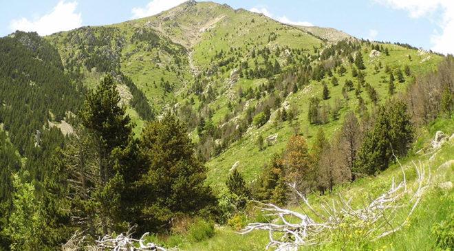 Піренейські гори, Каталонія