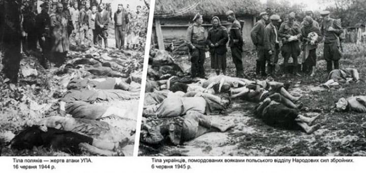Вогонь братовбивства «Грубешівської революції»
