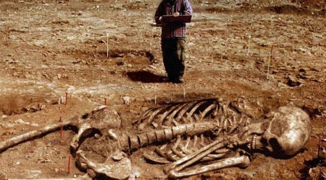 Широко поширене фото скелета велетня